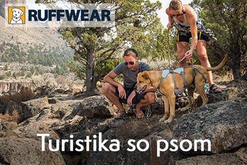 Turistika so psom - užite si to spolu