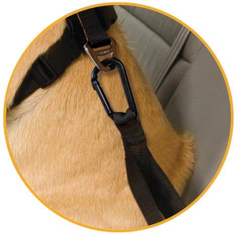 Bezpečnostný autopás pre psa s upínacím mechanizmom Kurgo Direct to Seatbelt Tether